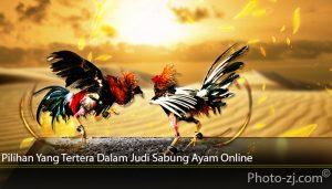 Pilihan Yang Tertera Dalam Judi Sabung Ayam Online